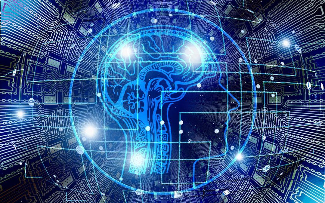Comprendre le lien entre cerveau et histoire.